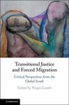 The Right of Return to Iraq Under International Law by Hannibal Travis and Shamiran Mako